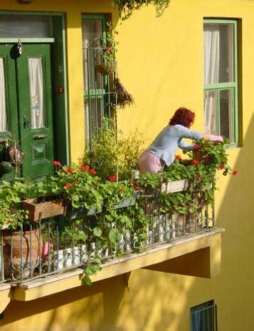 orto sul terrazzo di casa orto sul terrazzo e ortaggi da piantare