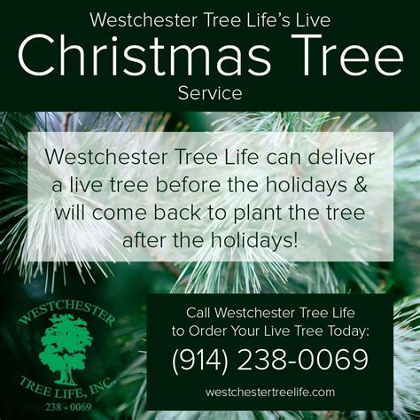 blog westchester tree life