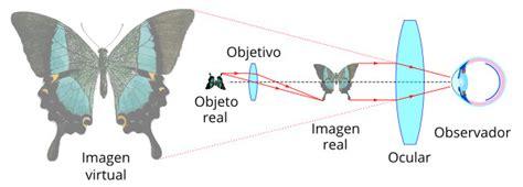 imagenes reales y virtuales en un microscopio optico el microscopio 243 ptico mundo microscopio