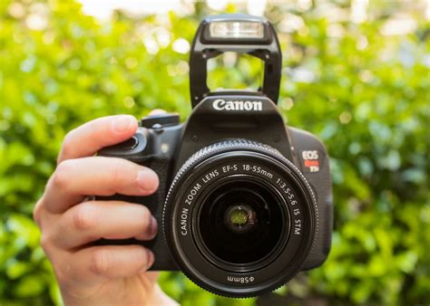 best cheap dslr for beginners best cheap photography cameras for beginners