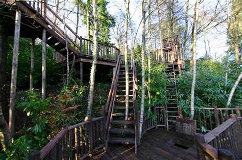 crazy tree houses crazy decks tree house blue forest