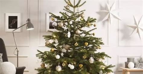 you can get a real christmas tree for a fiver at ikea in
