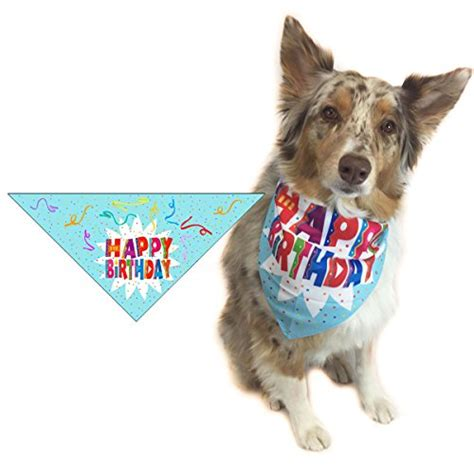 birthday bandana happy birthday bandana birthday scarf accessory great gift idea