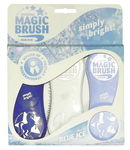 Sale Edition Isi 6 magic brush winteredition isi to go