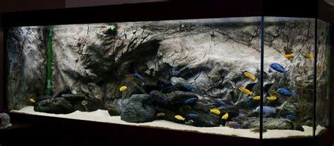 aquarium design for cichlids 12 best images about african cichlid aquascape on
