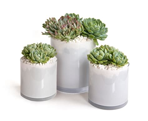 easy diy centerpiece idea lovely green and purple