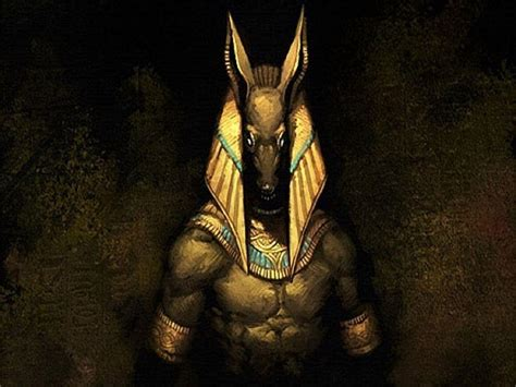 anubis wallpapers wallpaper cave