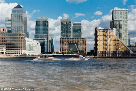 thames clipper lost and found a lightsaber a pet dog and an elderly woman the bizarre