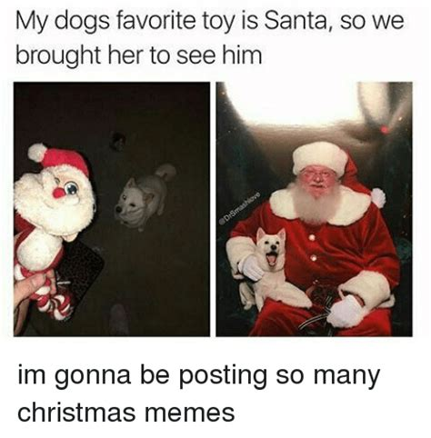Meme Christmas - funny christmas memes www pixshark com images