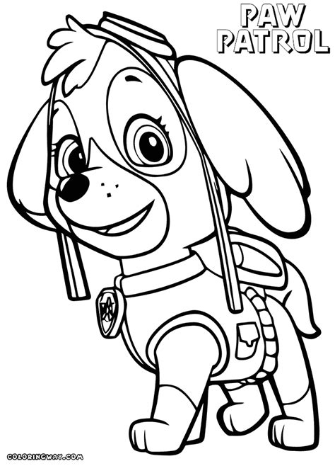 paw patrol blank coloring pages to print sky paw patrol free colouring pages