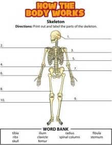 www kidshealth org how the body works bones activity