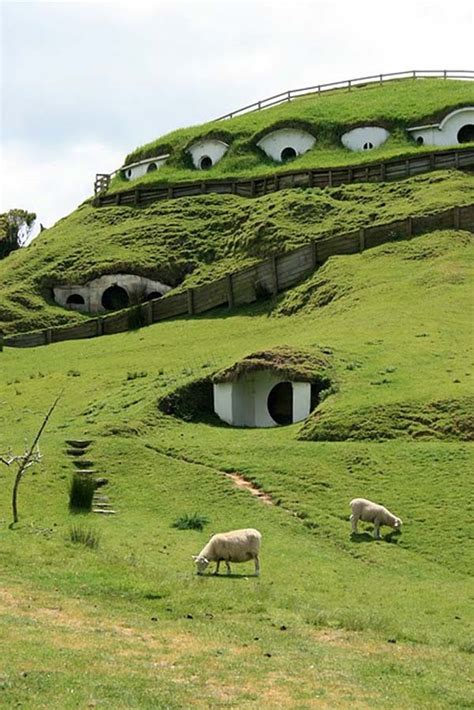 hobbit houses new zealand cute lord of the rings hobbit houses in new zealand