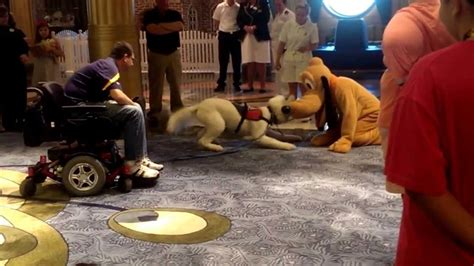 boat pet r a service dog meets pluto aboard the disney fantasy youtube