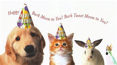 Animals Wishing Happy Birthday Animal Happy Birthday Mom Quotes Quotesgram