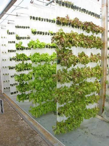 vertical vegetable gardening systems better health news 187 high density vertical growing the