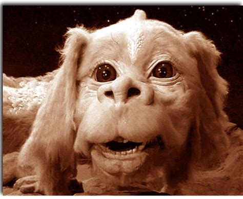 from neverending story from never ending story breeds picture