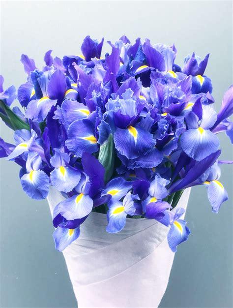 flower bouquet delivery blue flower bouquet delivery