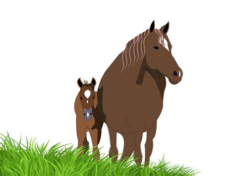 foals and horses presentations ppt backgrounds animals