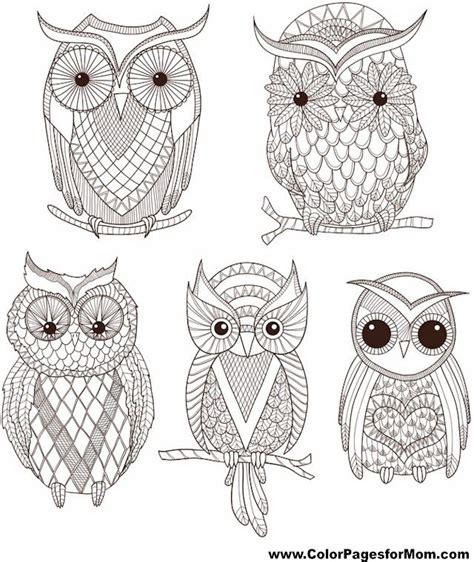 owl moon coloring page 220 ber 1 000 ideen zu eulen ausmalbilder auf pinterest