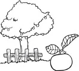 apple tree coloring page apple tree coloring page