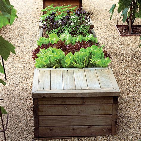 Build Your Own Vegetable Garden Box How To Make Your Own Vegetable Garden Box 5 Tips For