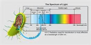 Uv C Light Uv Edu Radiant Industrial Solutions