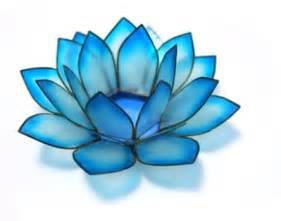 Turquoise Lotus Flower 21 Best Images About Turquoise Aqua Flowers On