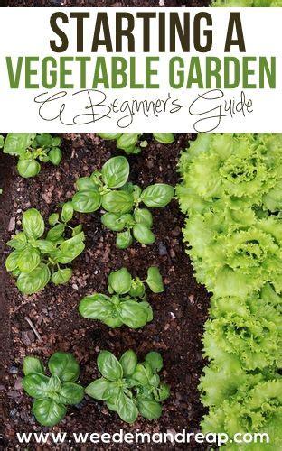 Starting A Vegetable Garden For Beginners Starting A Vegetable Garden Gardens Vegetables And