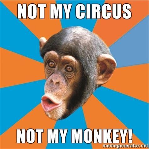 Monkey Meme Generator - not my circus not my monkey stupid monkey meme generator