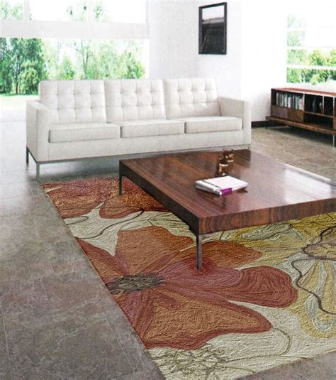 Houzz Area Rugs Living Room by Floral Area Rug Transitional Living Room Orange