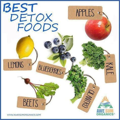 Top 5 Detox Foods by Enjoy The Best Of Detox Foods Detox Diets