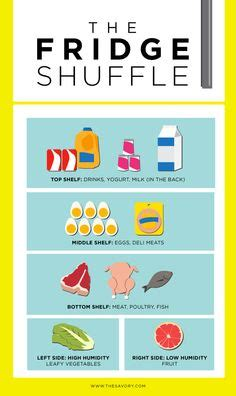 fridge layout guide food and drink infographics on pinterest food