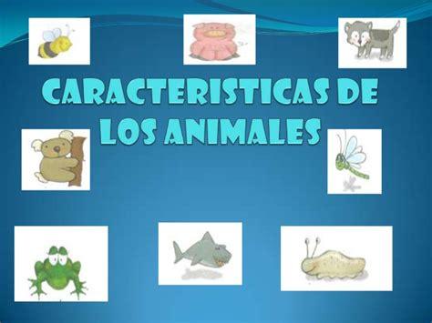 imagenes figurativas con sus caracteristicas caracteristicas de los animales