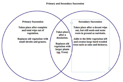 primary and secondary succession venn diagram ecological succession yennie ho apes