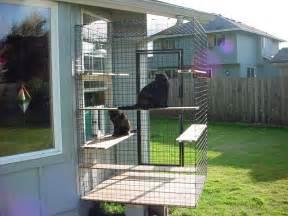 woodland washing cat enclosure 187 home of habitat