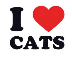Wall Mirrors Stickers i heart cats giclee print at allposters com