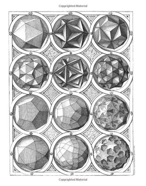 the golden section scott olsen 17 best images about arted math science on pinterest
