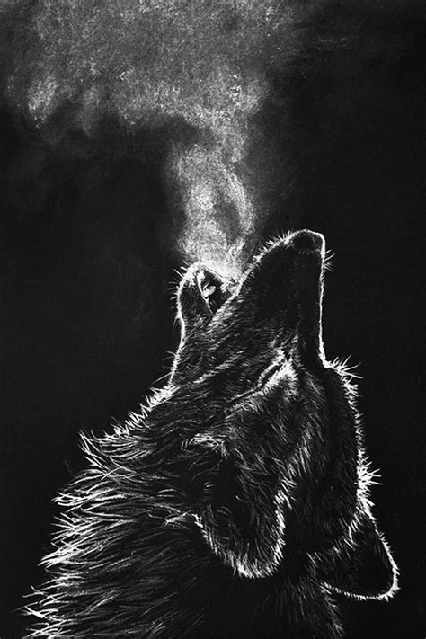 wolf wallpaper pinterest et free wolf wallpaper for desktop awesome wolf
