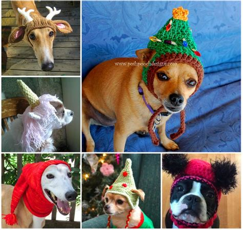 repeat crafter me puppy hat repeat crafter me puppy hat breeds picture