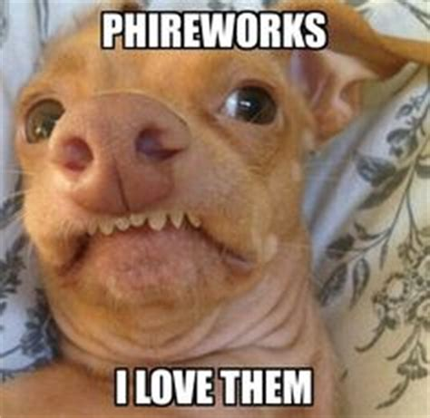 Dog Teeth Meme - lisp meme dog on pinterest tuna dogs and the funniest
