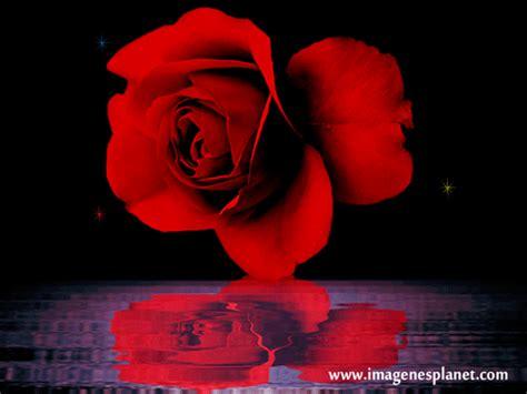 imagenes de feliz dia romanticas feliz d 237 a de la mujer im 225 genes de amor con movimiento
