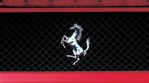 ferrari horse wallpaper ferrari logo wallpapers 64 wallpapers wallpapers 4k