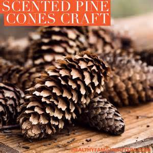 scented pine cones craft