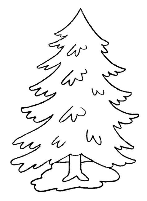 winter pine tree coloring book coloring pages