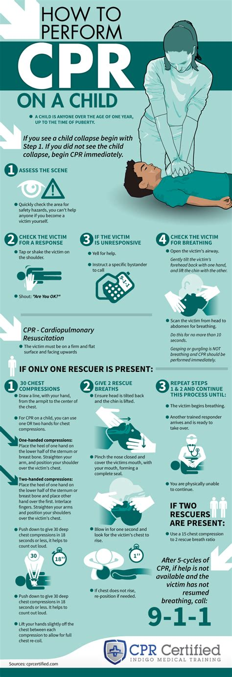 how to give a cpr how to perform cpr on a child infographic