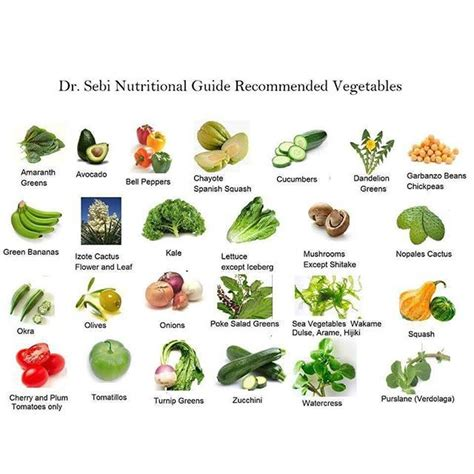 Dr Sebi Detox Diet by Best 25 Dr Sebi Diet Ideas On Alkaline Foods