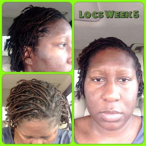damien walter dreadlocks 78 best 1 or 2 braids images on pinterest natural hair