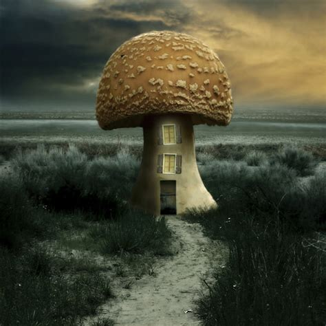 imagenes de surrealismo surreal photo manipulation 40 amazing artwork hongkiat