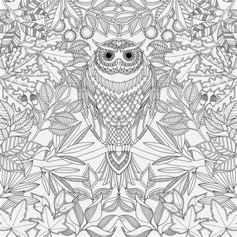 Lu Cree Owl livro para colorir adulto pesquisa pintura anti estress livros