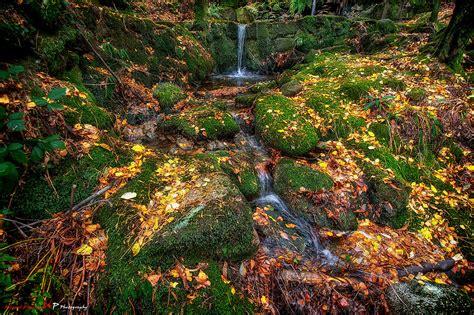 monte aloia nature park espanha the world s best photos of aloia and pontevedra flickr
